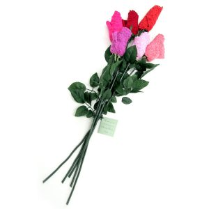 Hanky Panky Half Dozen Thong Panty Roses in Mixed Pink